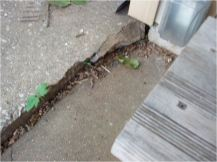 "This 1"" tripping hazard was due to the settlement of the concrete slab."